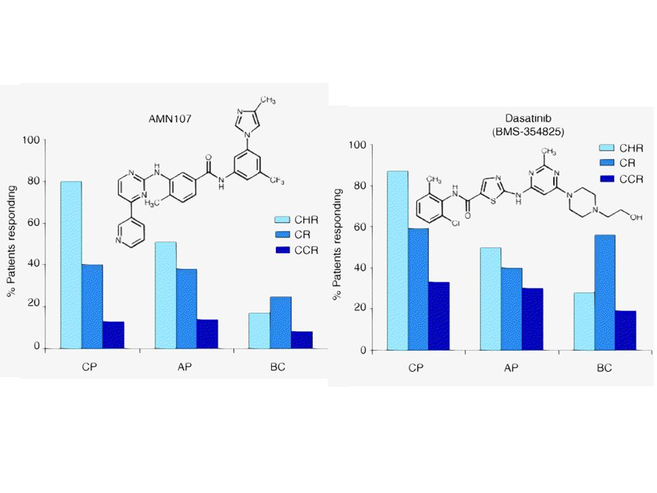 Figure 2. Early clinical trials results for dasatinib (upper panel) or AMN107 (lower panel) treatment of imatinib-refractory and intolerant CML patients.
