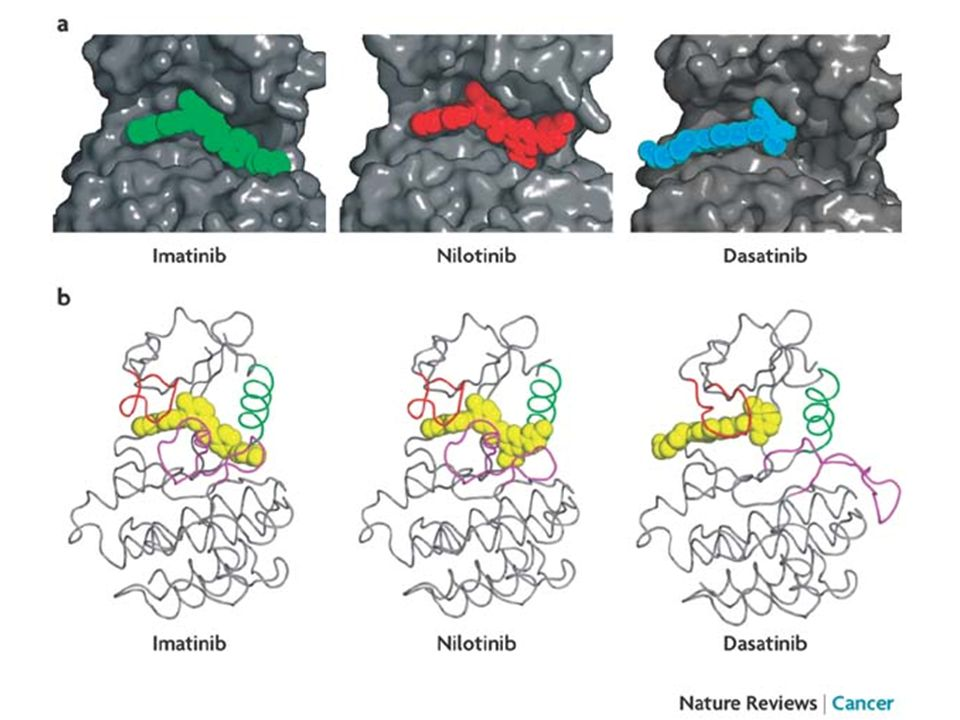 a |Surface representations of crystal structures of ABL kinase in complex with imatinib (green), nilotinib (red) and dasatinib (blue).