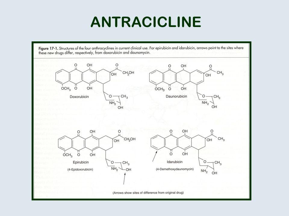 ANTRACICLINE