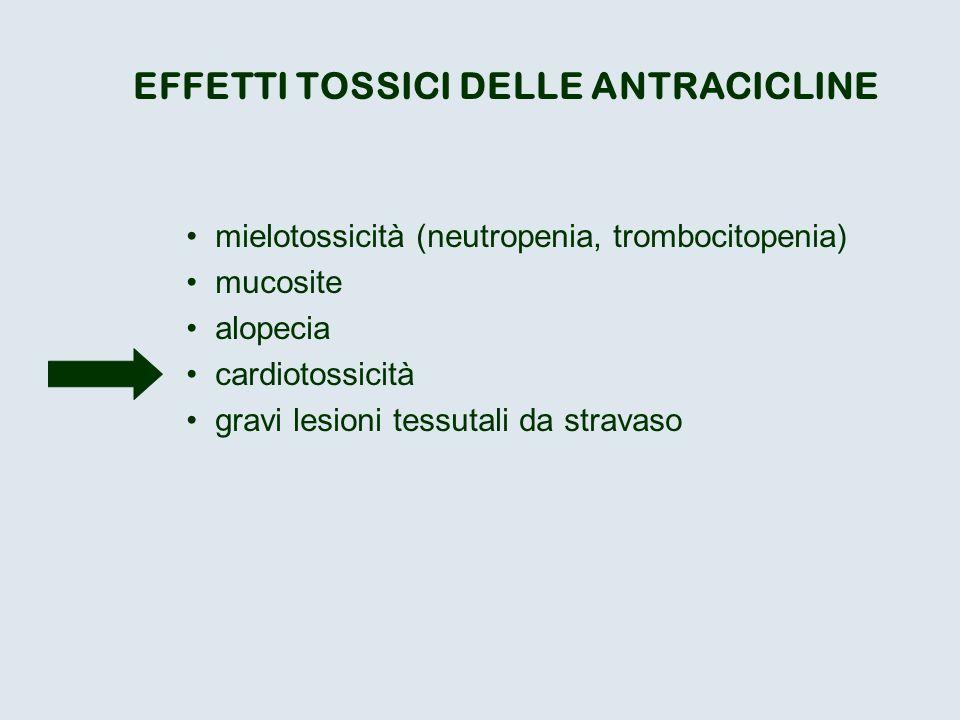 EFFETTI TOSSICI DELLE ANTRACICLINE