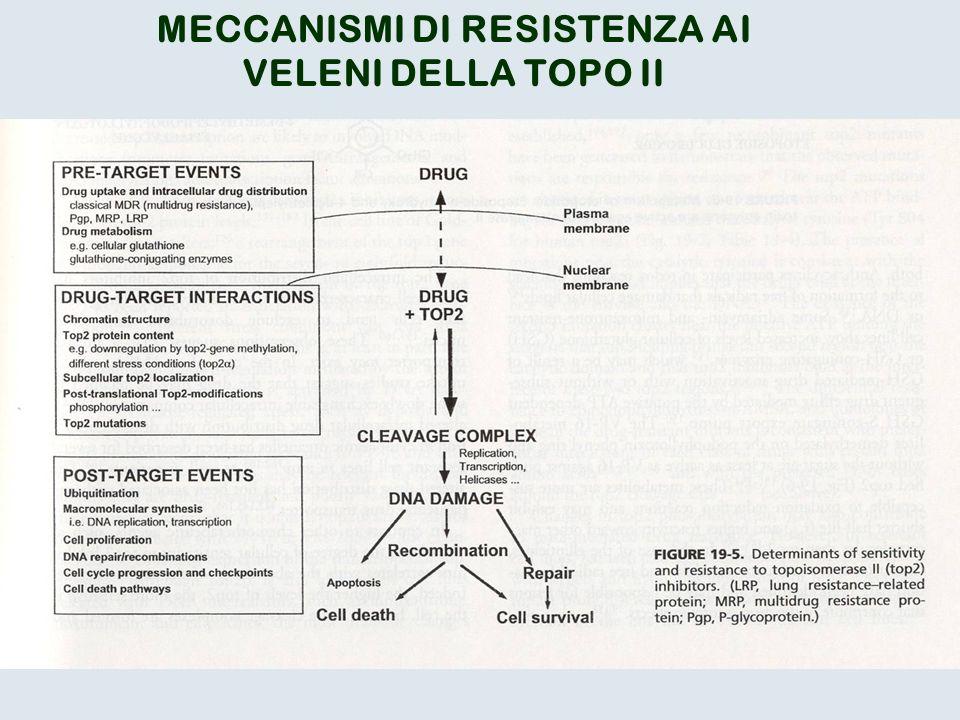 MECCANISMI DI RESISTENZA AI
