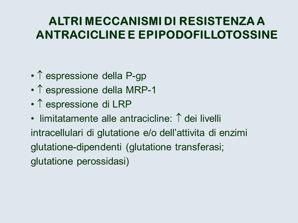 ALTRI MECCANISMI DI RESISTENZA A ANTRACICLINE E EPIPODOFILLOTOSSINE