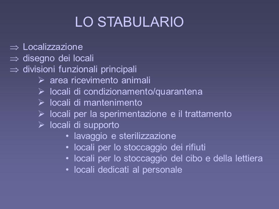 LO STABULARIO Localizzazione disegno dei locali