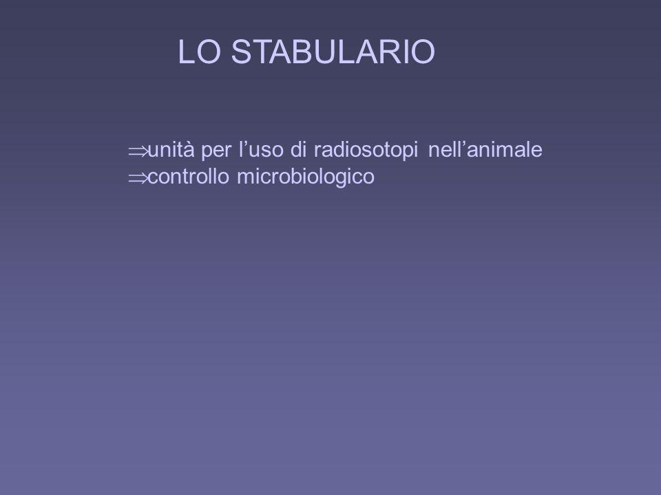 LO STABULARIO unità per l'uso di radiosotopi nell'animale