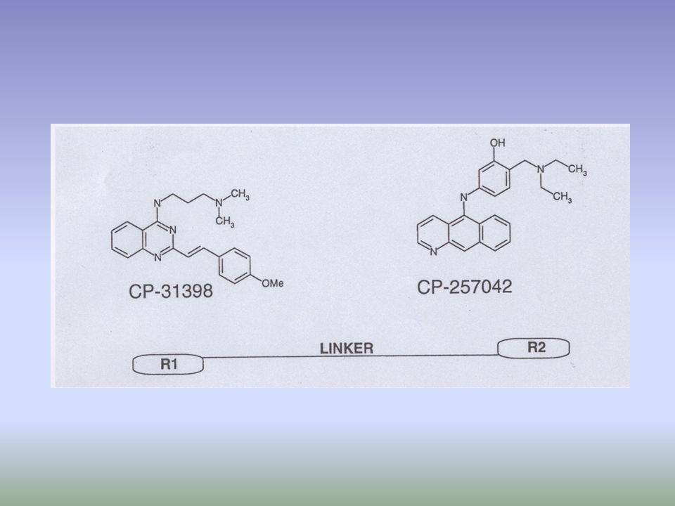 CP-31398 does not bind the core domain of recombinant wt or mutant p53 in vitro.