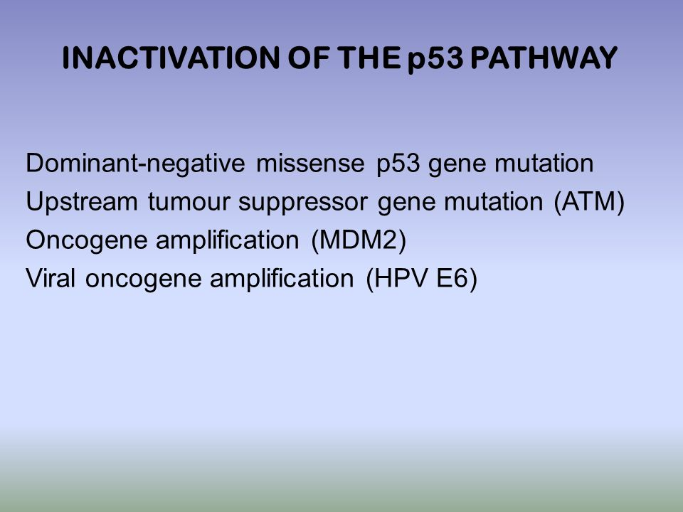 INACTIVATION OF THE p53 PATHWAY
