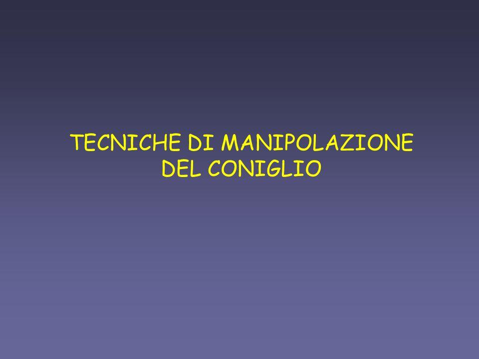 TECNICHE DI MANIPOLAZIONE