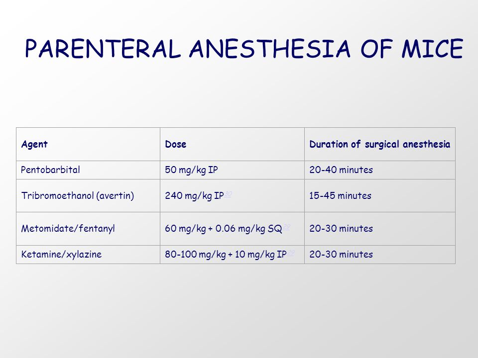 PARENTERAL ANESTHESIA OF MICE