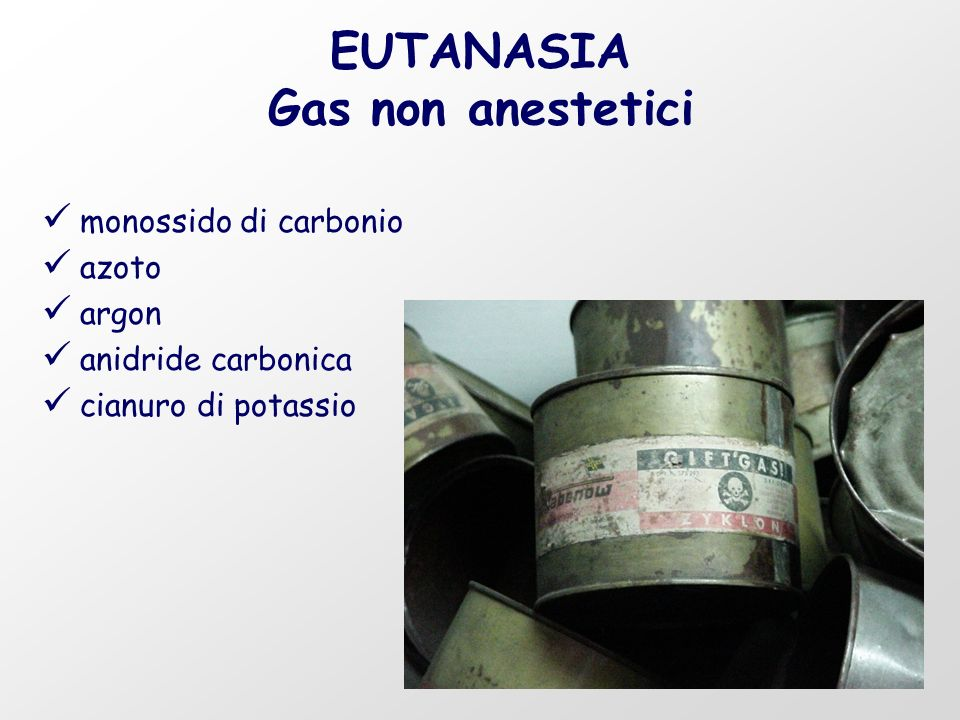 EUTANASIA Gas non anestetici