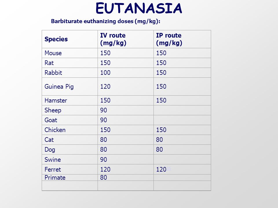 EUTANASIA Species IV route (mg/kg) IP route (mg/kg) Mouse 150 Rat