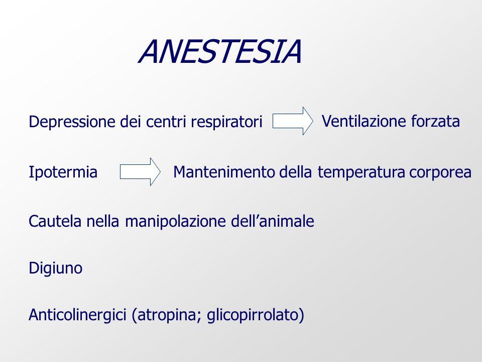 ANESTESIA Depressione dei centri respiratori Ventilazione forzata