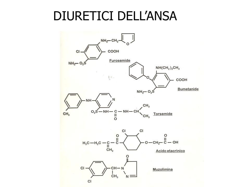 DIURETICI DELL'ANSA