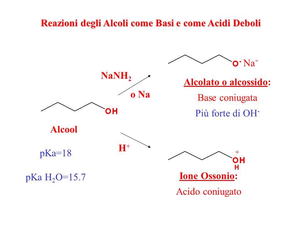 Reazioni degli Alcoli come Basi e come Acidi Deboli