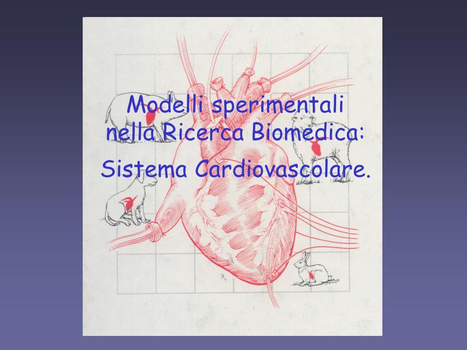 nella Ricerca Biomedica: