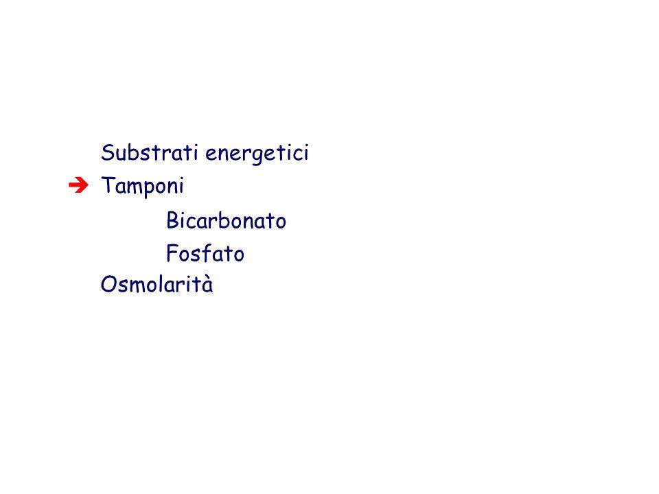 Substrati energetici Tamponi Osmolarità Bicarbonato Fosfato