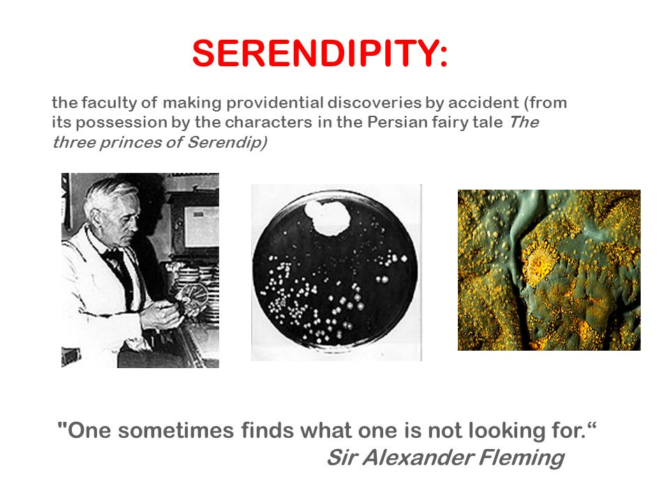 SERENDIPITY: One sometimes finds what one is not looking for.