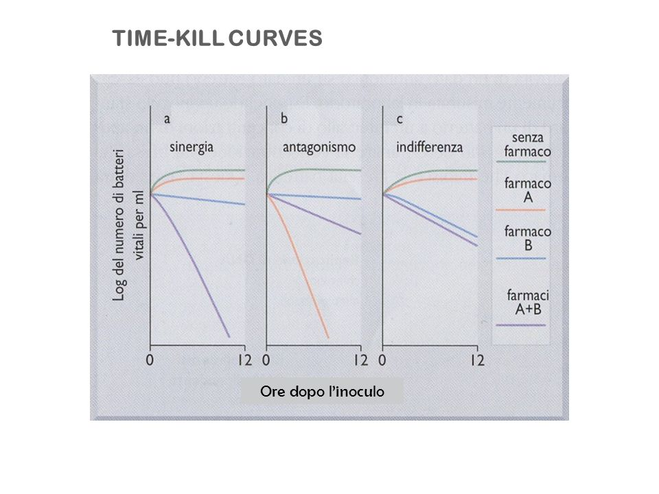 TIME-KILL CURVES Ore dopo l'inoculo