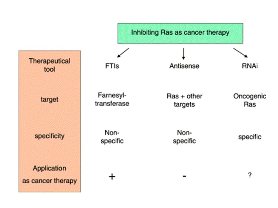 Three strategies to interfere with Ras signaling in cancer cells: farnesyltransferase inhibitors, antisense oligonucleotides and RNAi.