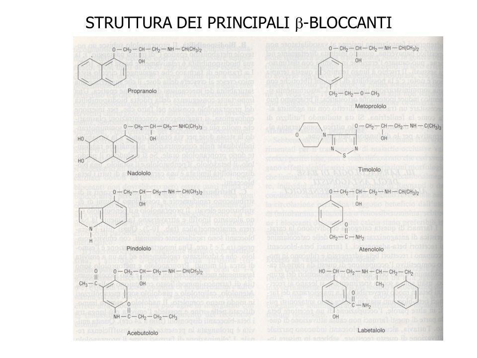 STRUTTURA DEI PRINCIPALI -BLOCCANTI
