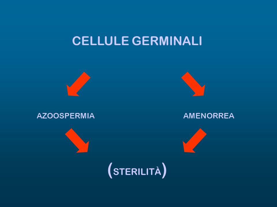 CELLULE GERMINALI AZOOSPERMIA AMENORREA (STERILITÀ)