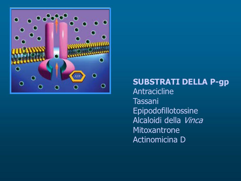 SUBSTRATI DELLA P-gp Antracicline Tassani Epipodofillotossine