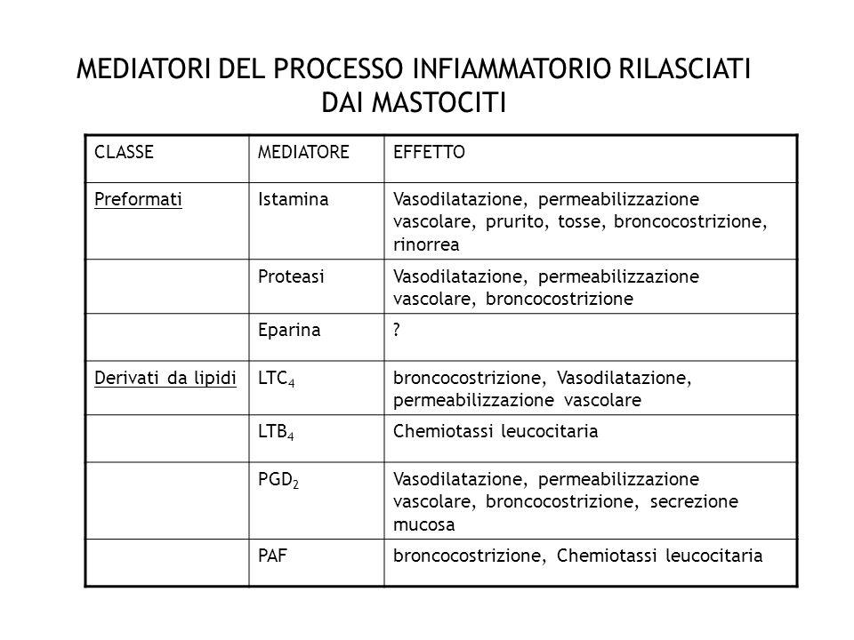 MEDIATORI DEL PROCESSO INFIAMMATORIO RILASCIATI