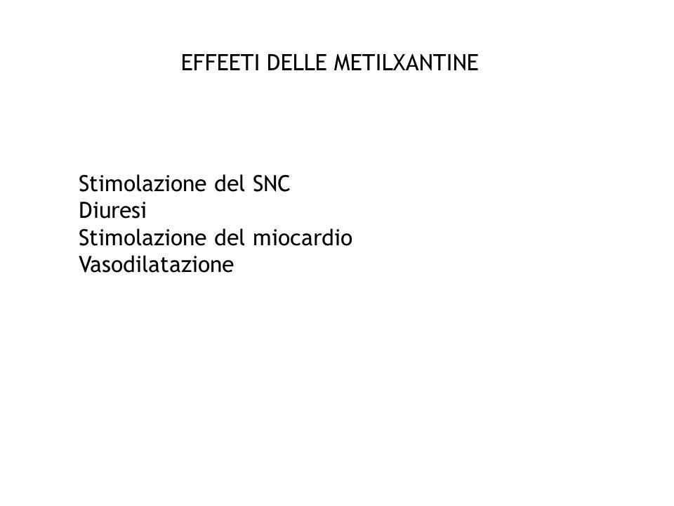 EFFEETI DELLE METILXANTINE