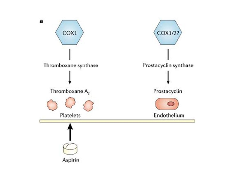 Figure 2 Contrasting vascular effects of prostacyclin and thromboxane A2.
