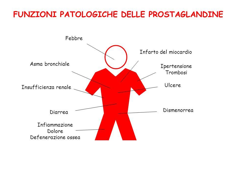 FUNZIONI PATOLOGICHE DELLE PROSTAGLANDINE