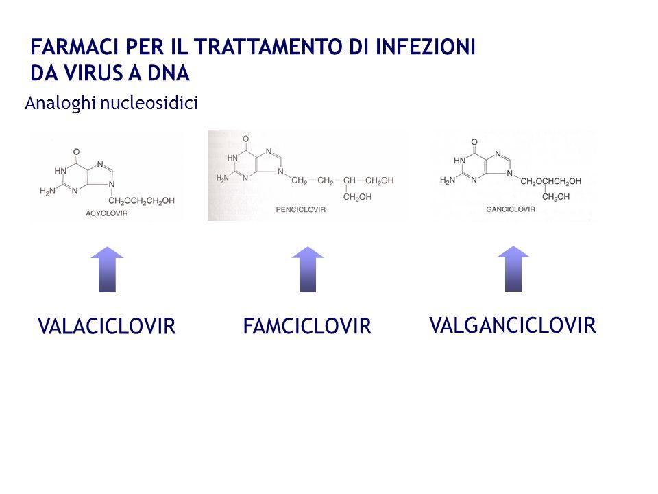 FARMACI PER IL TRATTAMENTO DI INFEZIONI DA VIRUS A DNA