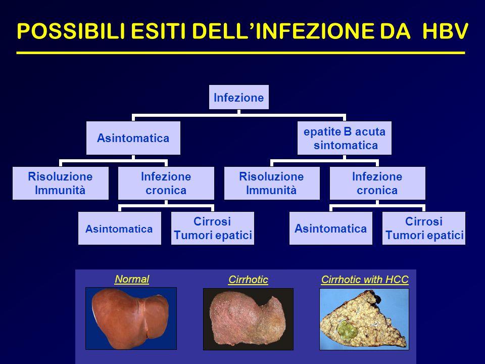 POSSIBILI ESITI DELL'INFEZIONE DA HBV
