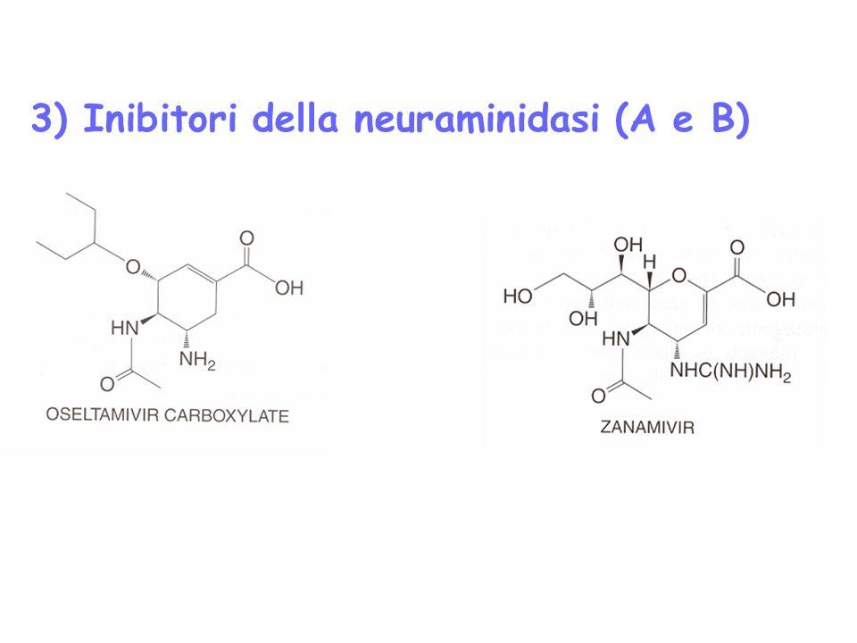 3) Inibitori della neuraminidasi (A e B)