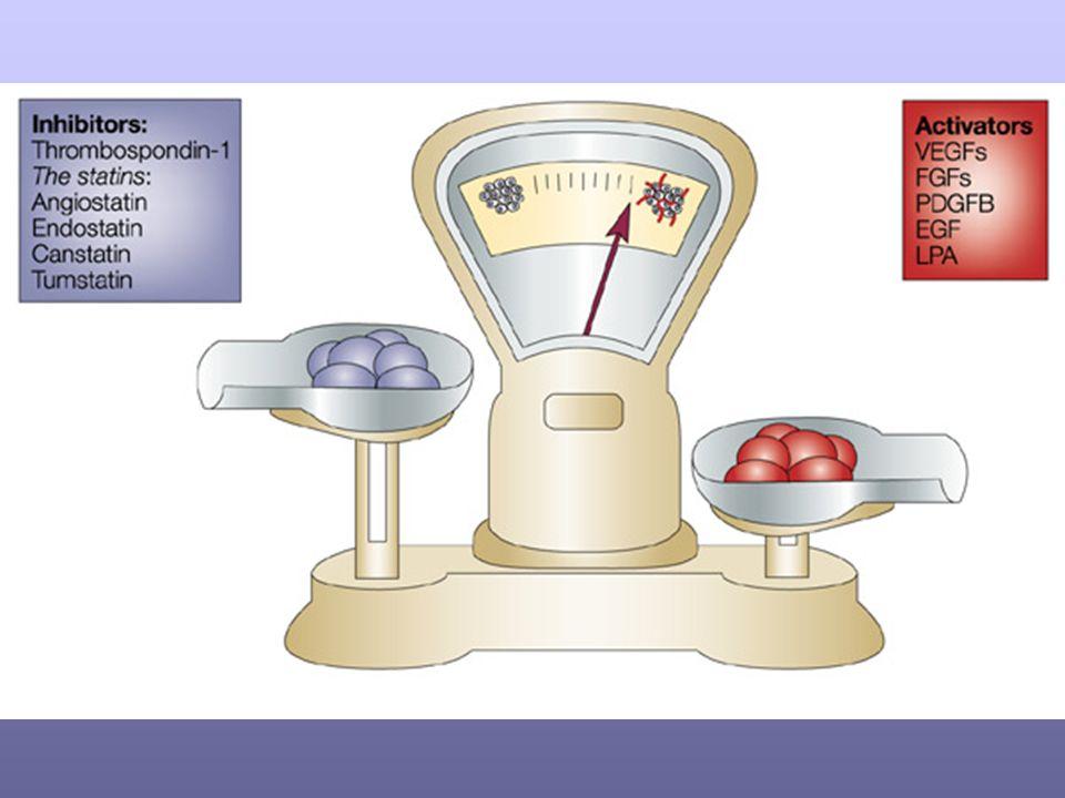 The angiogenic balance