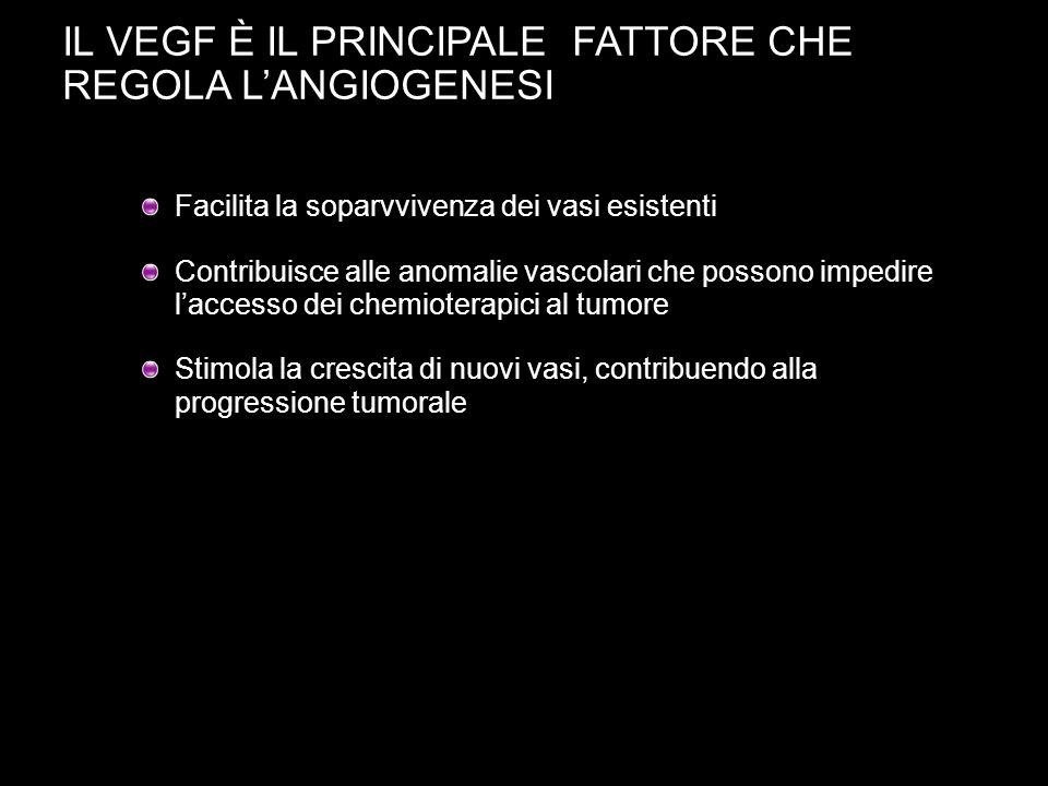 IL VEGF È IL PRINCIPALE FATTORE CHE REGOLA L'ANGIOGENESI