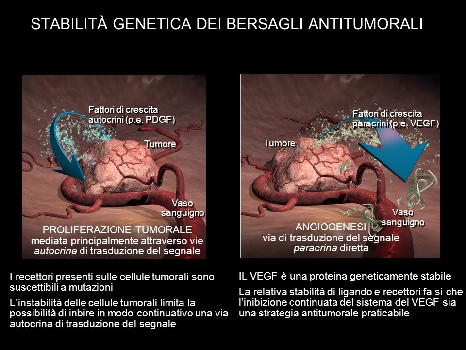 STABILITÀ GENETICA DEI BERSAGLI ANTITUMORALI