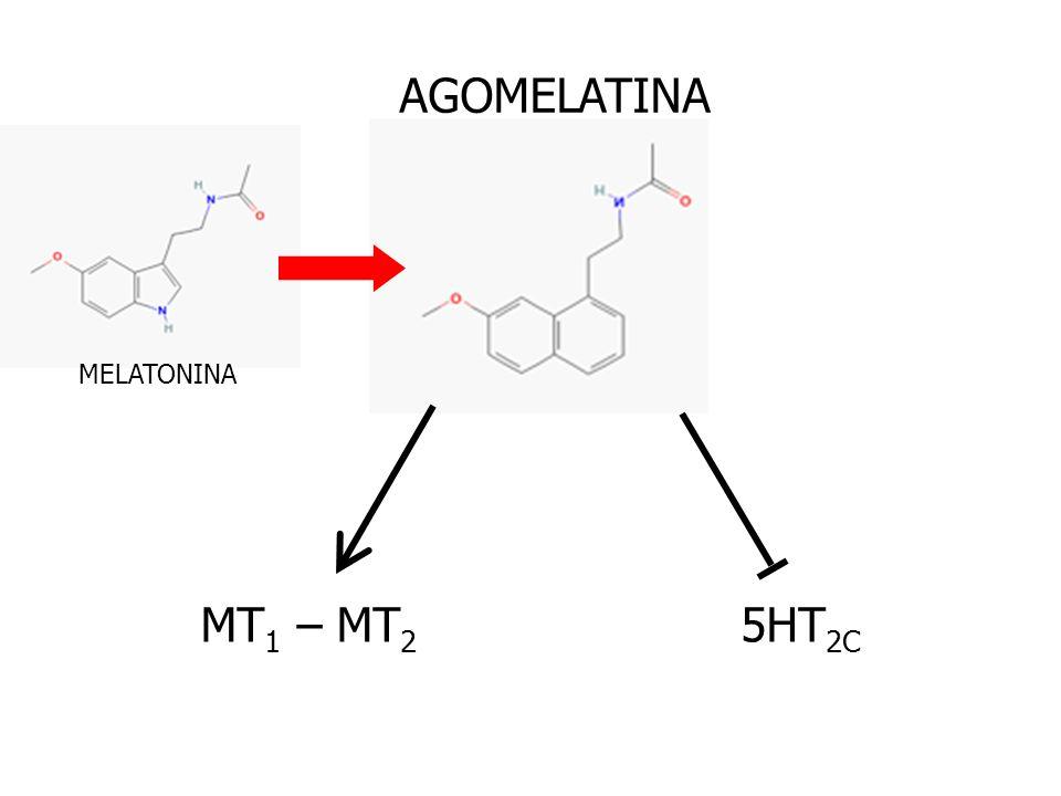 AGOMELATINA MELATONINA MT1 – MT2 5HT2C