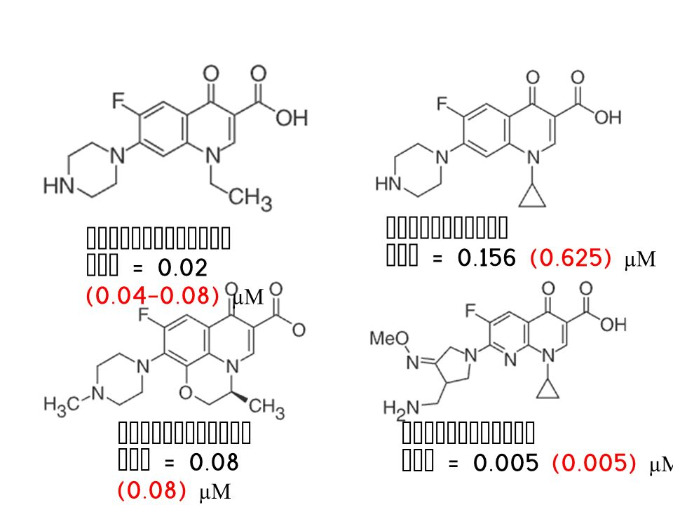 NORFLOXACIN MIC = 0.156 (0.625) µM. CIPROFLOXACIN. MIC = 0.02 (0.04-0.08) µM. LEVOFLOXACIN. MIC = 0.08 (0.08) µM.