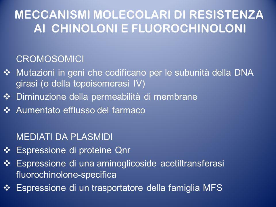 MECCANISMI MOLECOLARI DI RESISTENZA AI CHINOLONI E FLUOROCHINOLONI
