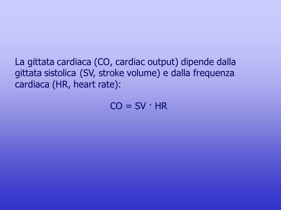 La gittata cardiaca (CO, cardiac output) dipende dalla gittata sistolica (SV, stroke volume) e dalla frequenza cardiaca (HR, heart rate):