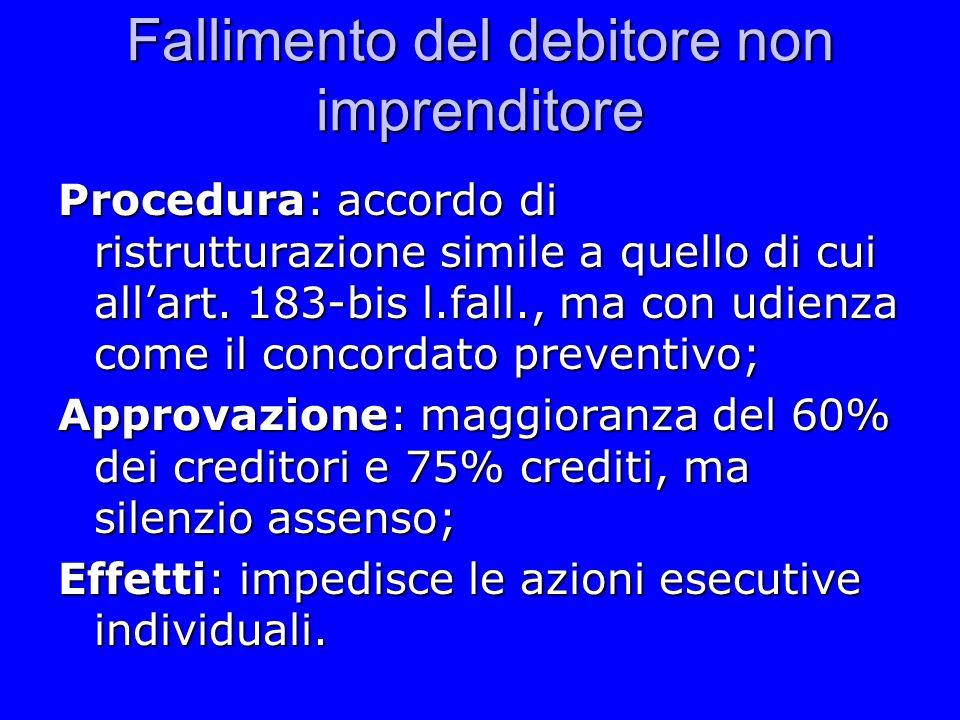 Fallimento del debitore non imprenditore