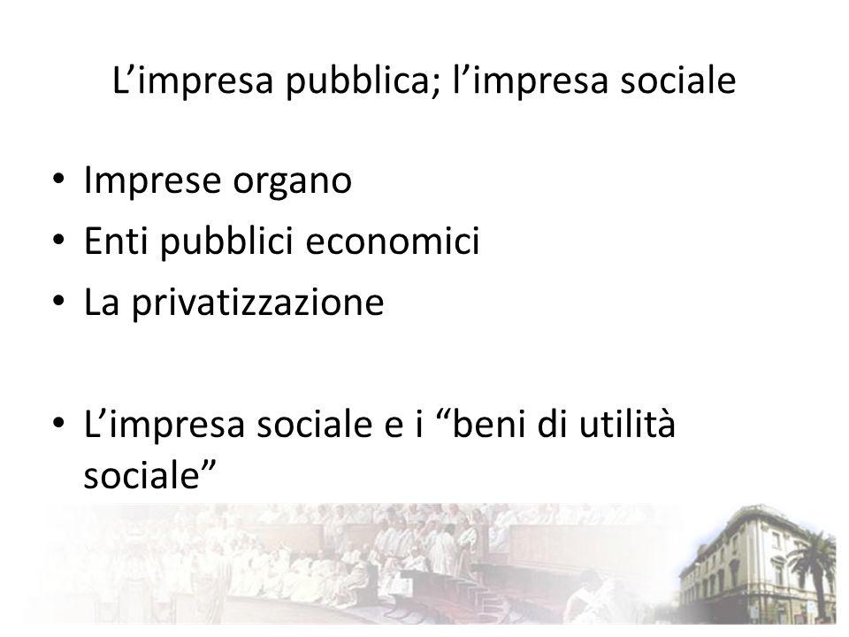 L'impresa pubblica; l'impresa sociale