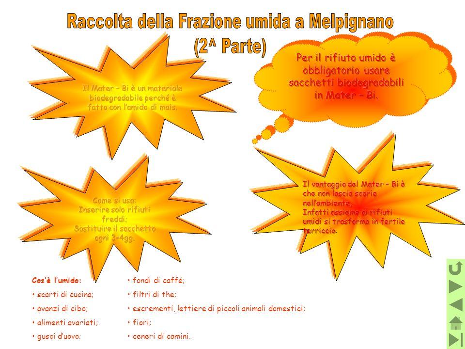 Raccolta della Frazione umida a Melpignano (2^ Parte)