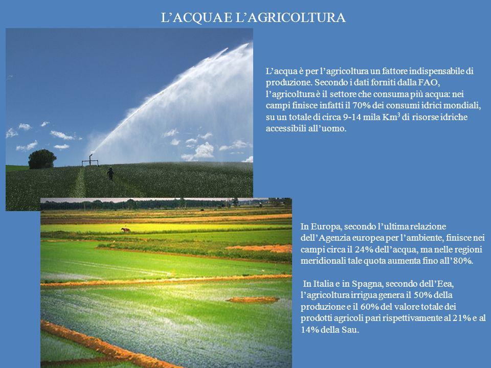 L'ACQUA E L'AGRICOLTURA