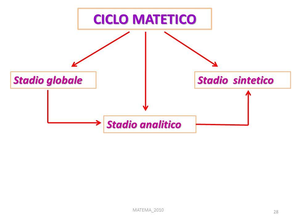 CICLO MATETICO Stadio globale Stadio sintetico Stadio analitico