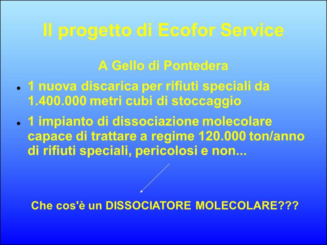 Il progetto di Ecofor Service