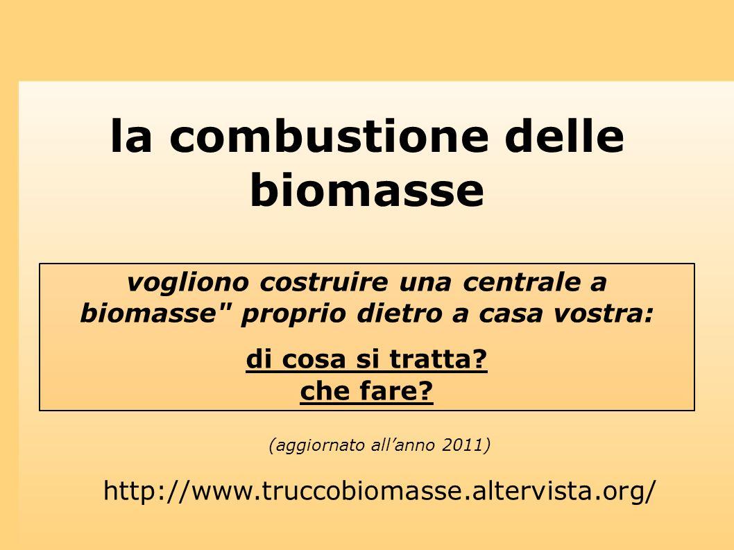 la combustione delle biomasse