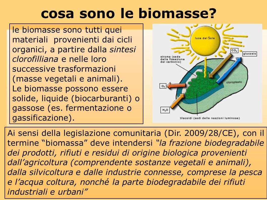 cosa sono le biomasse