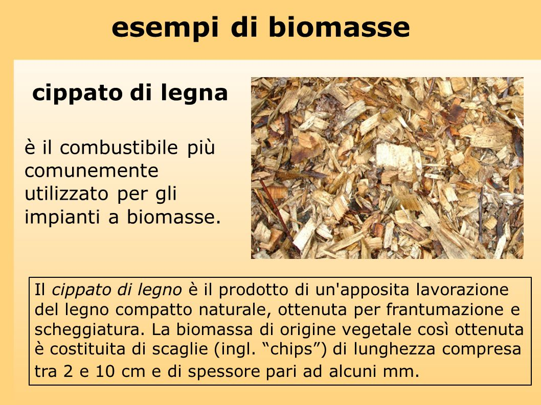 esempi di biomasse cippato di legna
