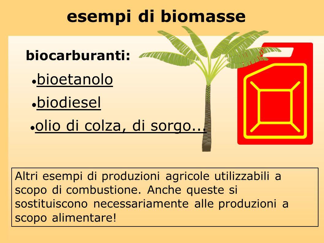 esempi di biomasse bioetanolo biodiesel olio di colza, di sorgo...
