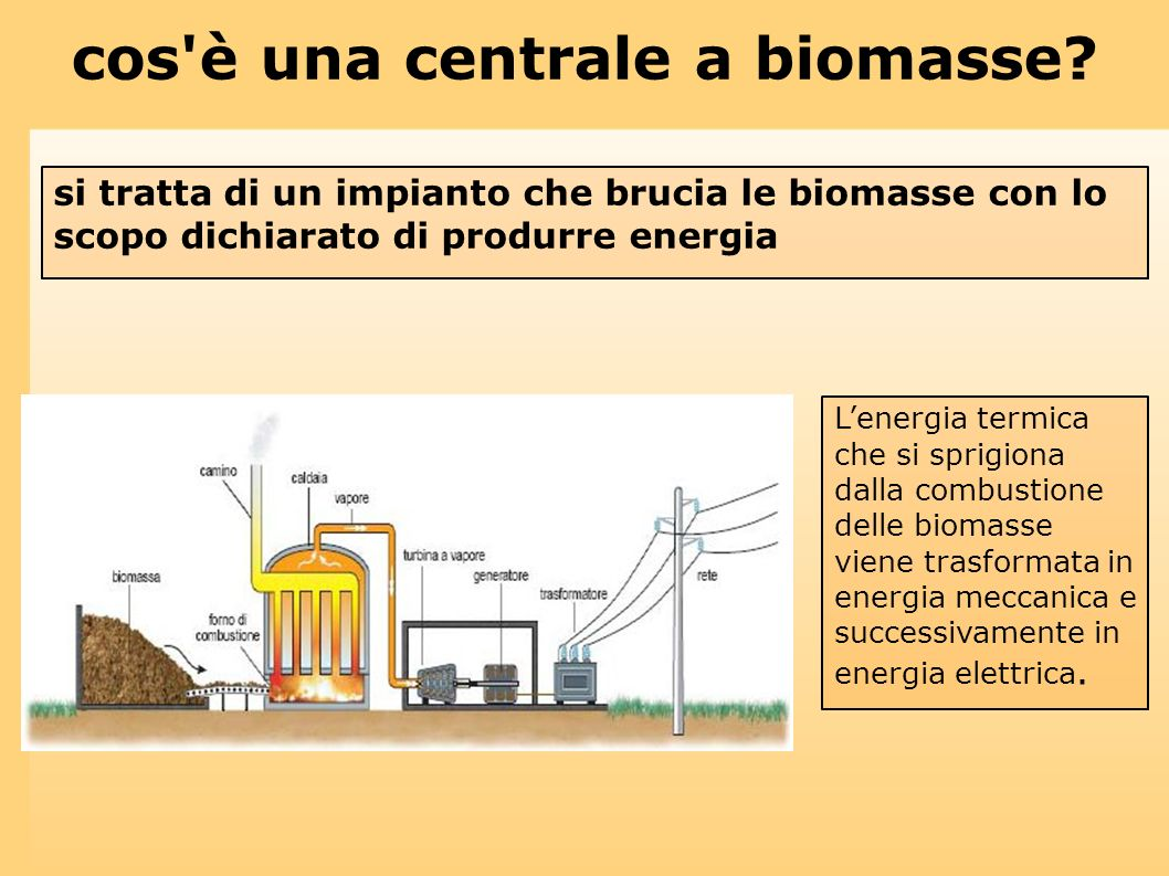 cos è una centrale a biomasse